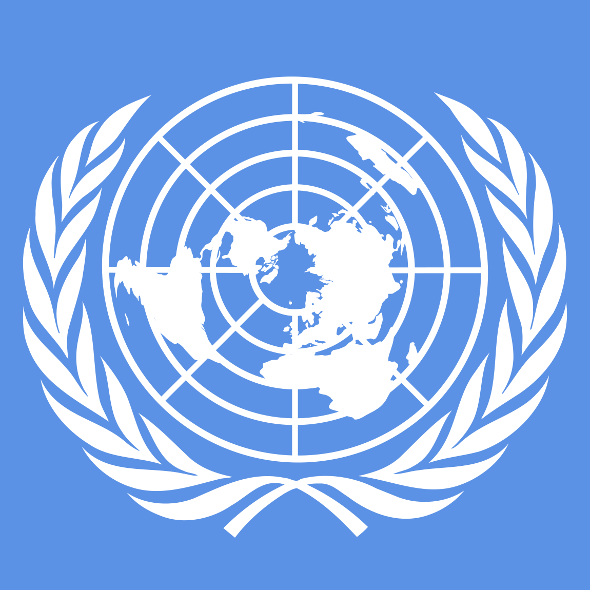 Who should get to use the internet Un Human Rights Logo